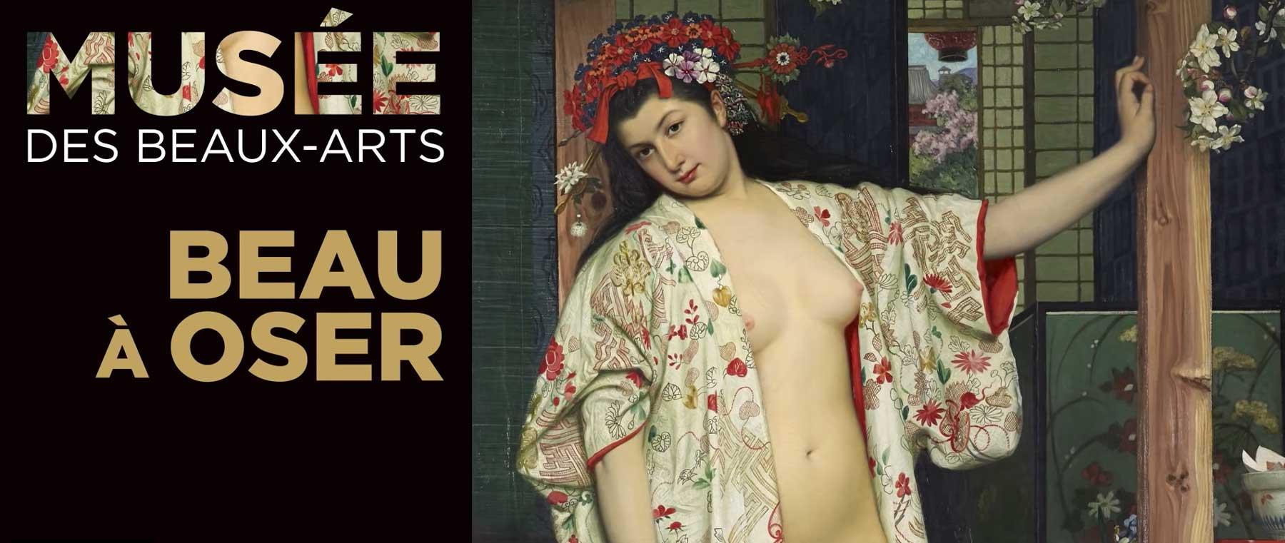 Musée des Beaux Arts de Dijon.... affiche de communication du Musée